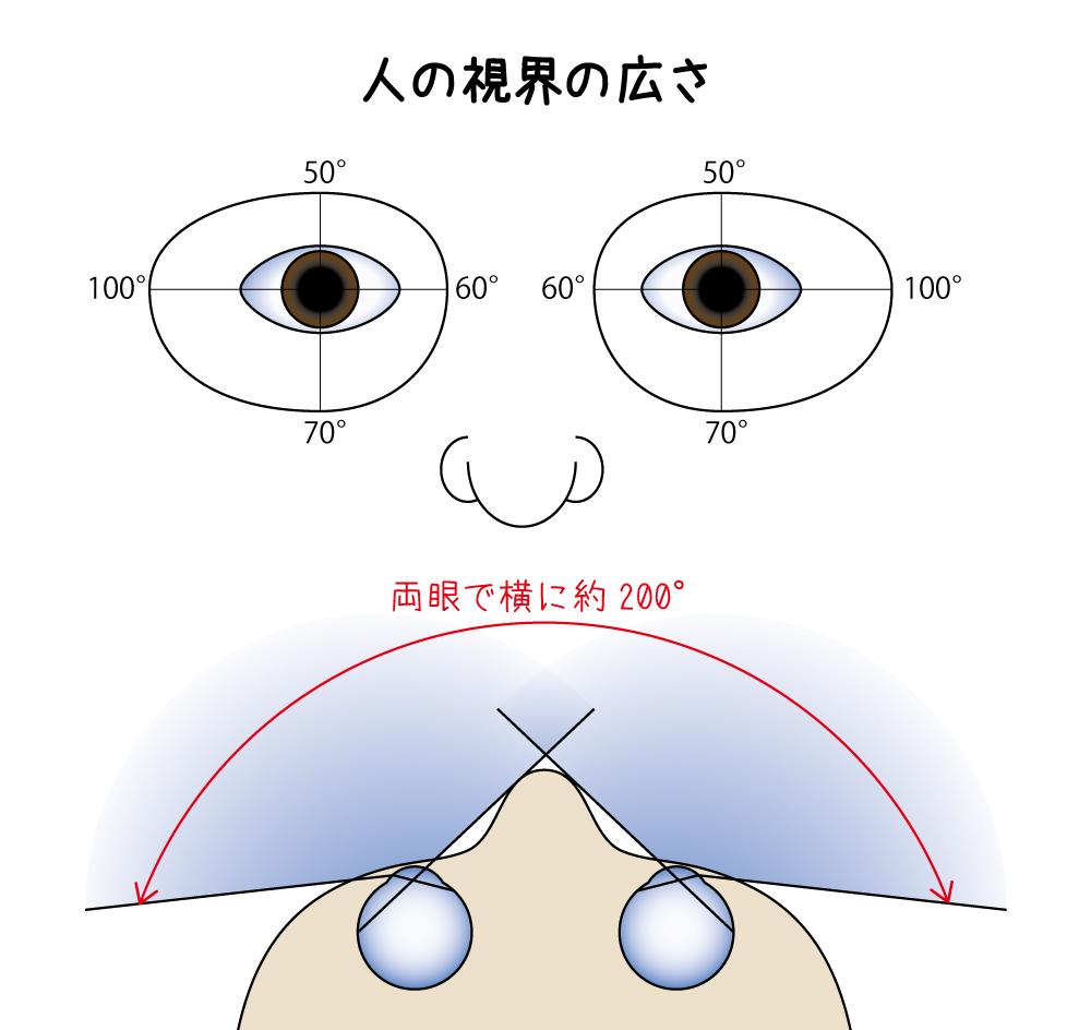 事例紹介】視界が狭かった | 「The Priority Opticians」長岡のメガネ店